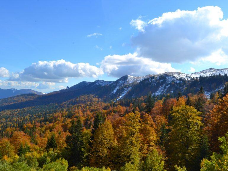 jahorina-planina-olimpijska-ljepotica-pale-mountain-republika-srpska-ljeto (1)